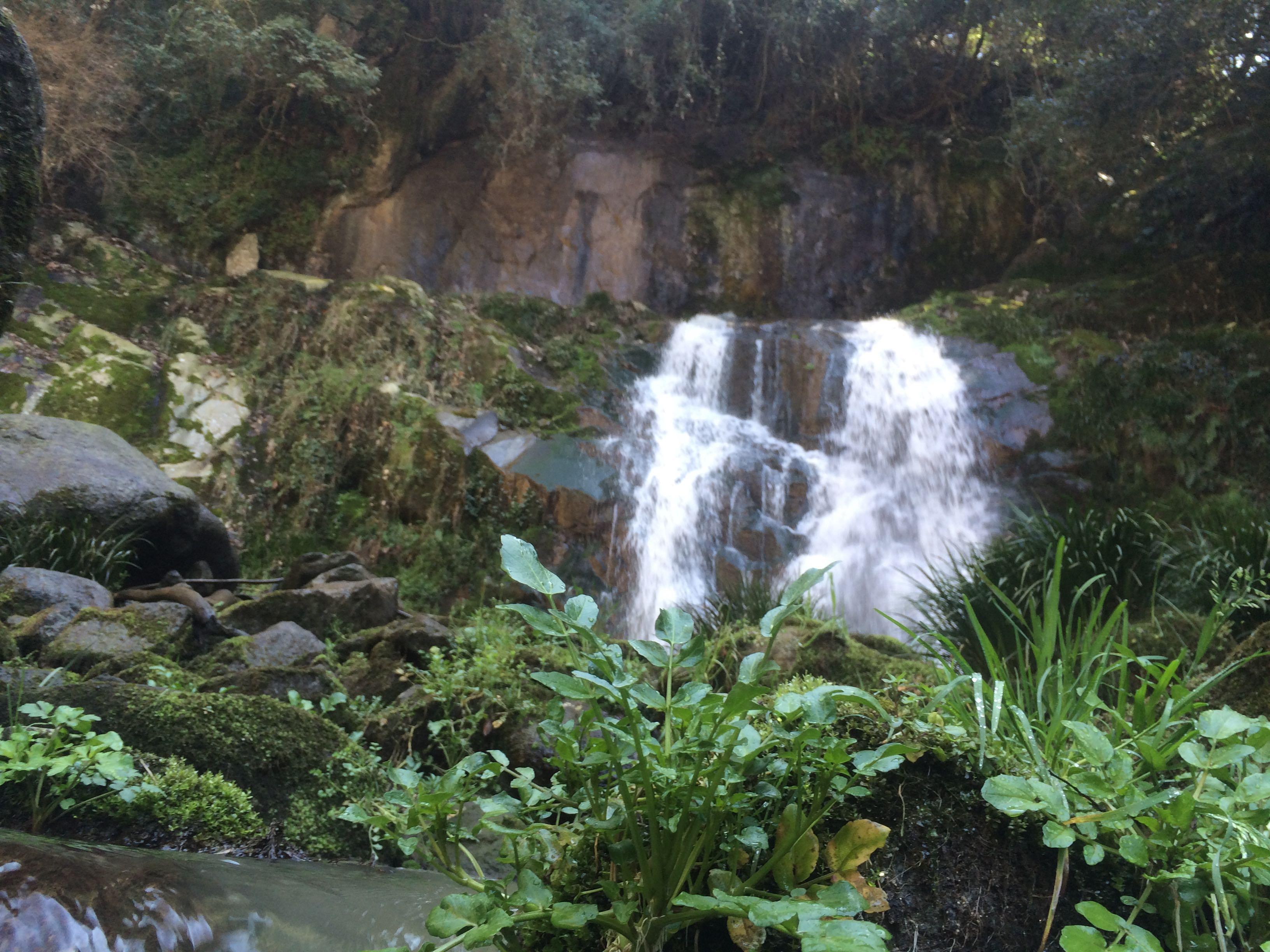 みとん今治,歌仙の滝公園,霧合の滝,菊間