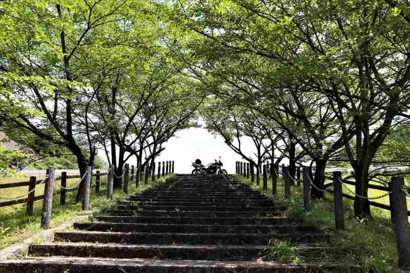 みとん今治,朝倉ダム,緑水公園,朝倉