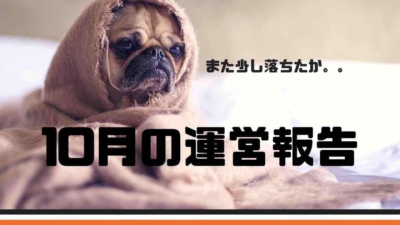 10月分,ehime,imabari,PV,みとん今治,ページビュー,今治,愛媛,運営報告