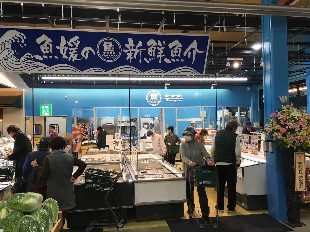 ehime, imabari, えひめ県漁連, さいさいきて屋, みとん今治, 今治, 愛媛, 直売所, 魚媛, 鮮魚