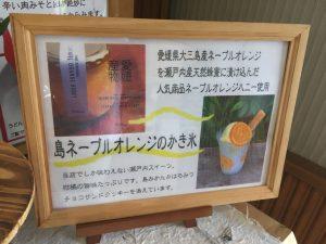 ehime,imabari,かき氷,みとん今治,スイーツ,今治,愛媛,道の駅湯ノ浦